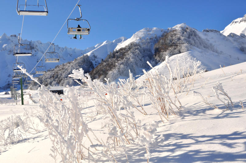 Winter holidays. Lifts from the top of a snow-covered vegetation on a beautiful winter day royalty free stock photos