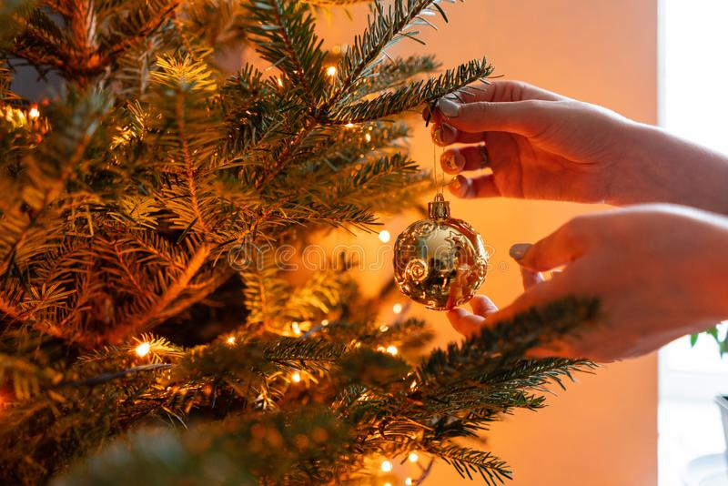 Winter holidays in a house interior. Happy young woman decorating christmas tree at home. Golden and white Christmas stock image