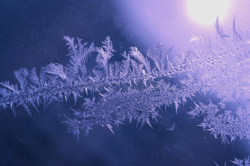 Winter Holidays Season Fantasy World Concept: Macro Image of Natural Ice Crystals Patterns on a Frosted Window Pane With Purple. Sun Glow. Hoarfrost Background stock image