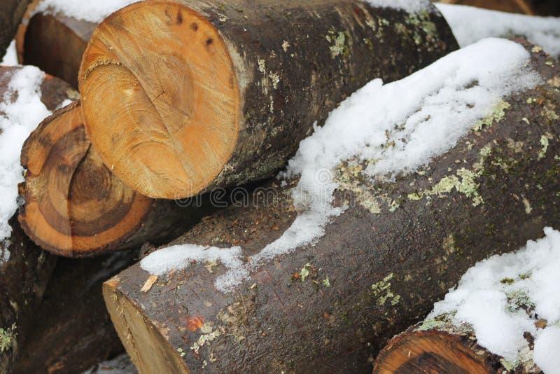 Winter-Holz mit Schnee auf ihm stockbilder