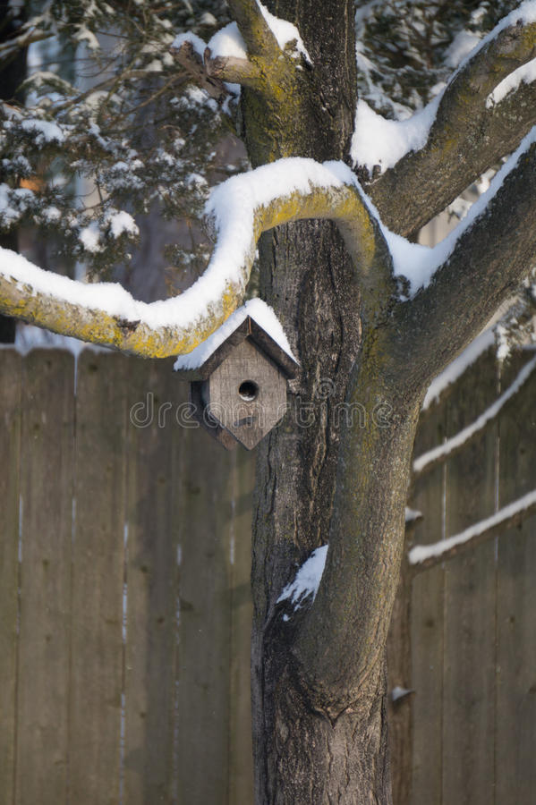 Winter Home. Wood bird house hanging from snow covered branch on a winter day stock photo