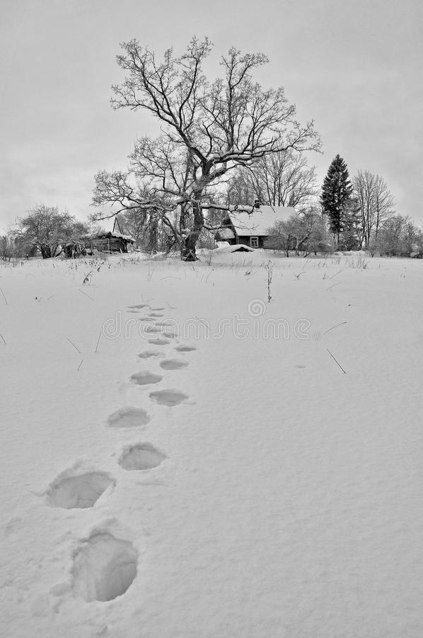 Winter house royalty free stock photography