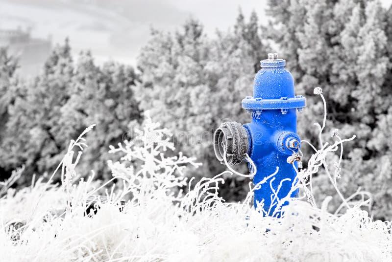 Winter-Hydrant lizenzfreie stockfotos