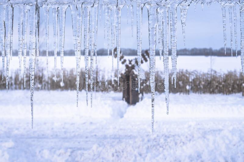 Winter icicles hang from top on snowy nature background stock image