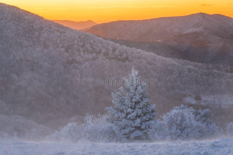 Winter im blauen Ridge Mountains 8 lizenzfreie stockfotos