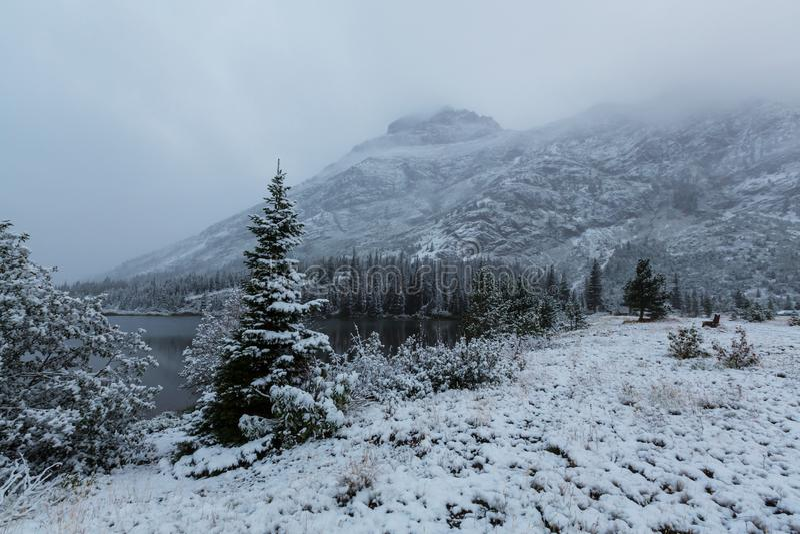 Winter im Gletscher-Park lizenzfreie stockbilder