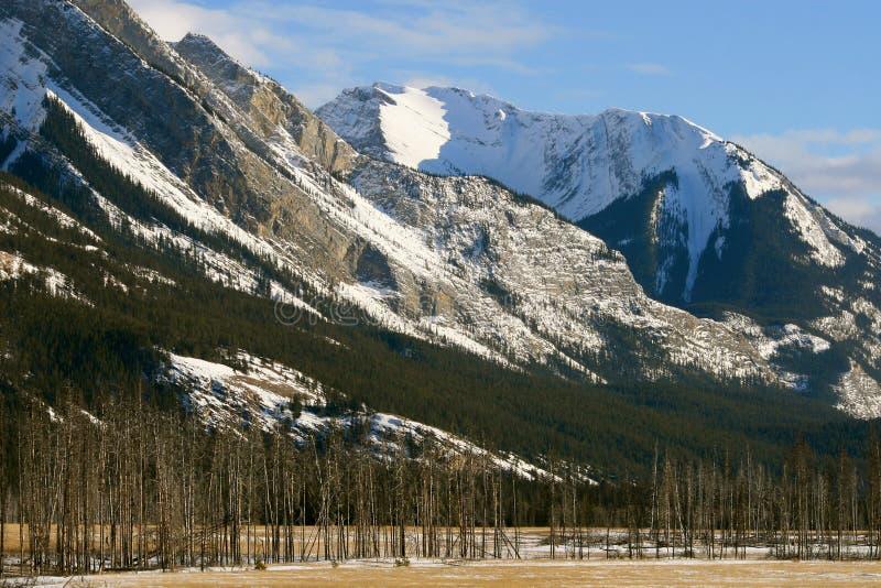 Winter im Jaspis, Kanada stockfotografie