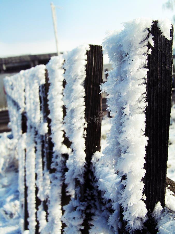 Winter ist hier lizenzfreie stockfotografie