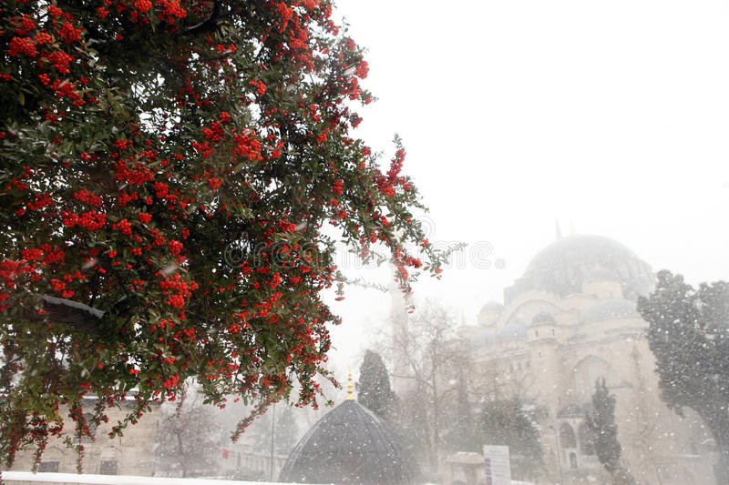 Winter in Istanbul stock image