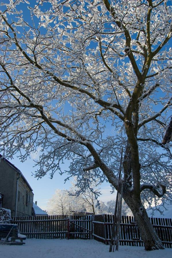 Winter in Jivova stockfotos