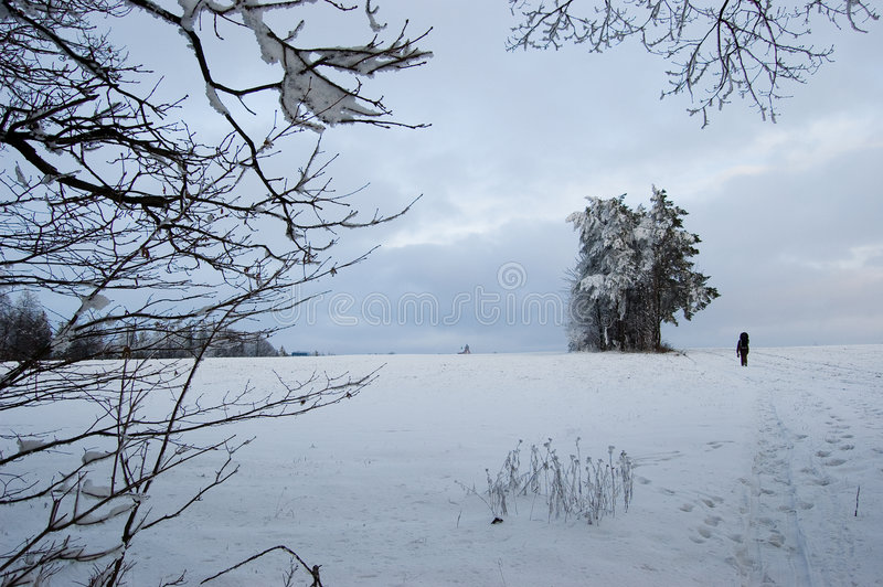 Winter in Jivova lizenzfreie stockfotografie