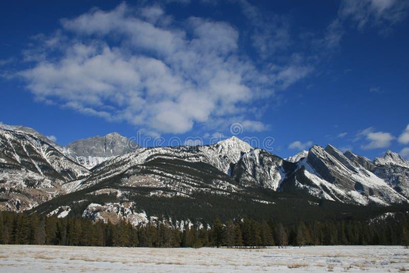 Winter in Kanada, Nationalpark des Jaspisses lizenzfreies stockfoto