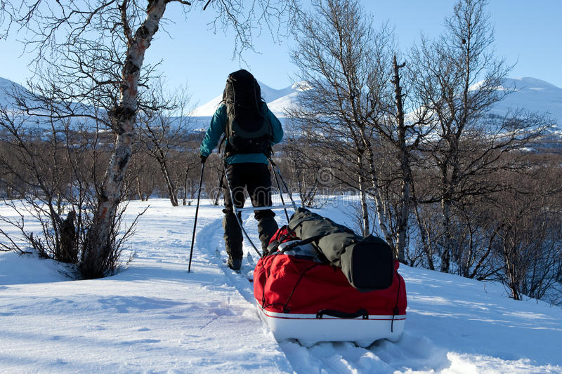 Winter on the Kungsleden. Single man with ski and sledge in the wilderness of Lapland stock photos