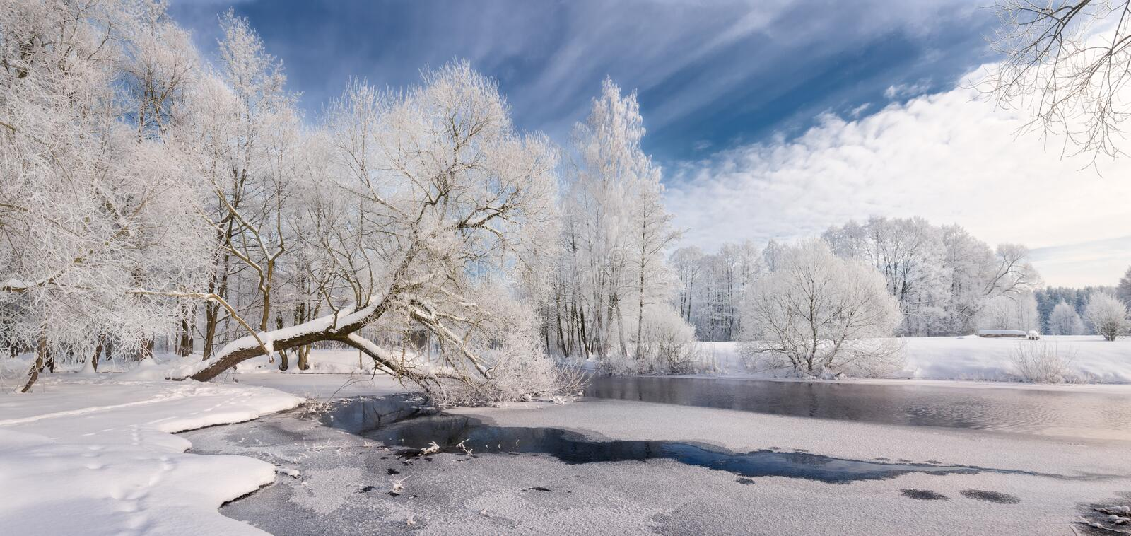 Winter Lace: Realistic Panoramic Christmas Landscape In White Tones With Icy River, Surrounded By Whitetail Trees And Deep Blue Sk stock photography
