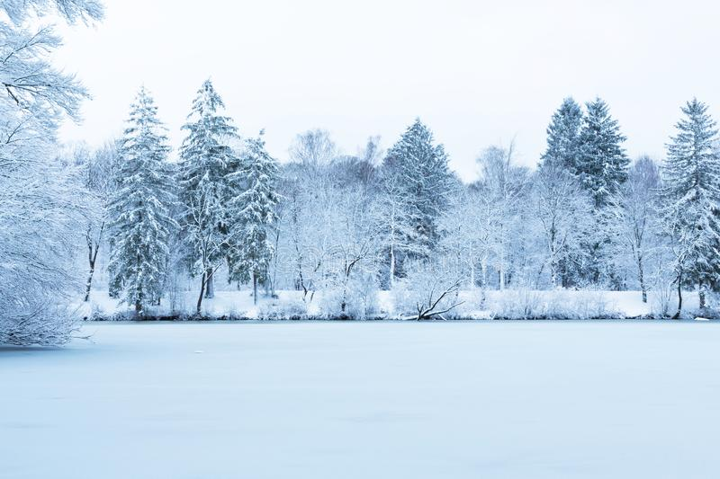Winter lake landscape in Munich park by Isar river. Snowy trees, frozen water stock photo
