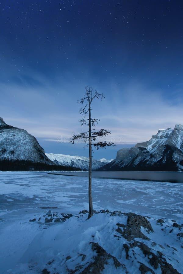 Winter Lake Minnewanka, Abraham, Methane bubbles,lifestyle, Travel Alberta, Canadian Rockies,Banff National Park,Icefiled Parkways. Frozen canadian lakes can stock image