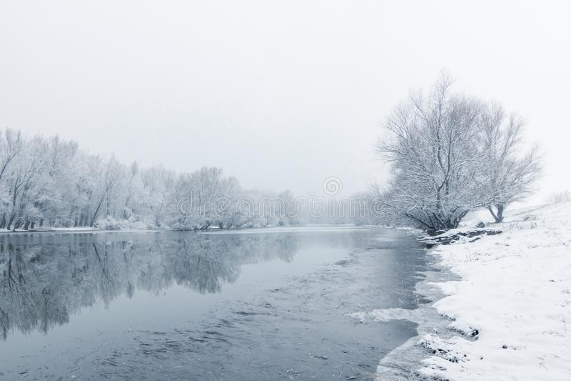 Winter lake scene reflecting in the water. Nature royalty free stock images
