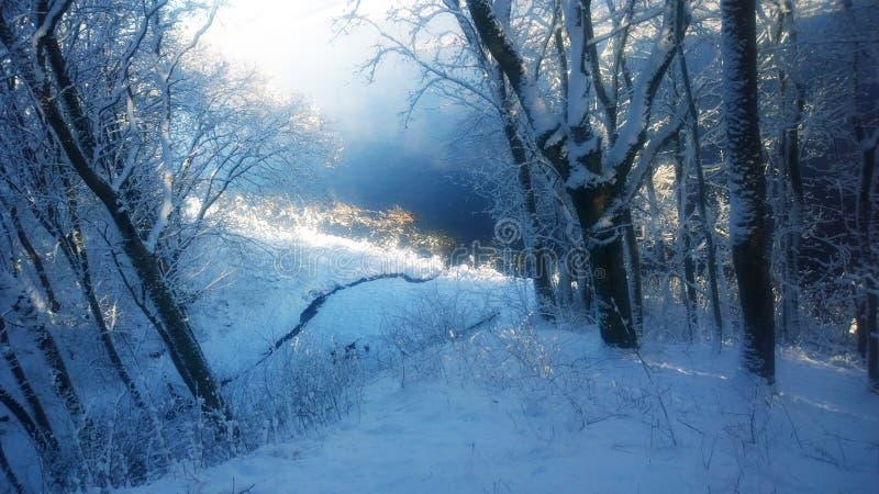 Winter lake. Winter landscape. stock images