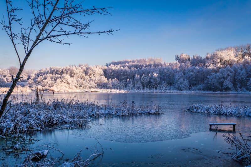 Winter lake at sunrise stock photography