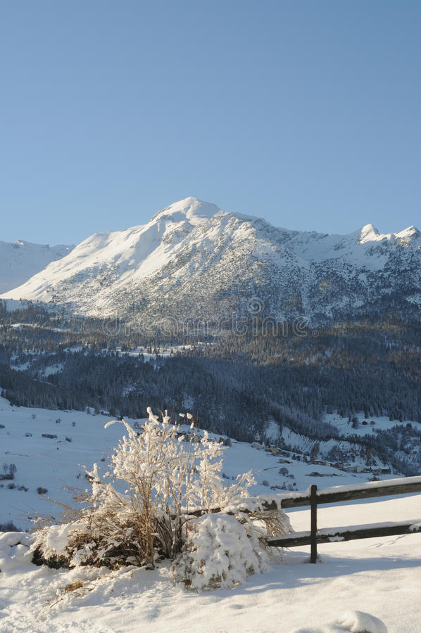 Winter landscape. In the swiss alps royalty free stock photo