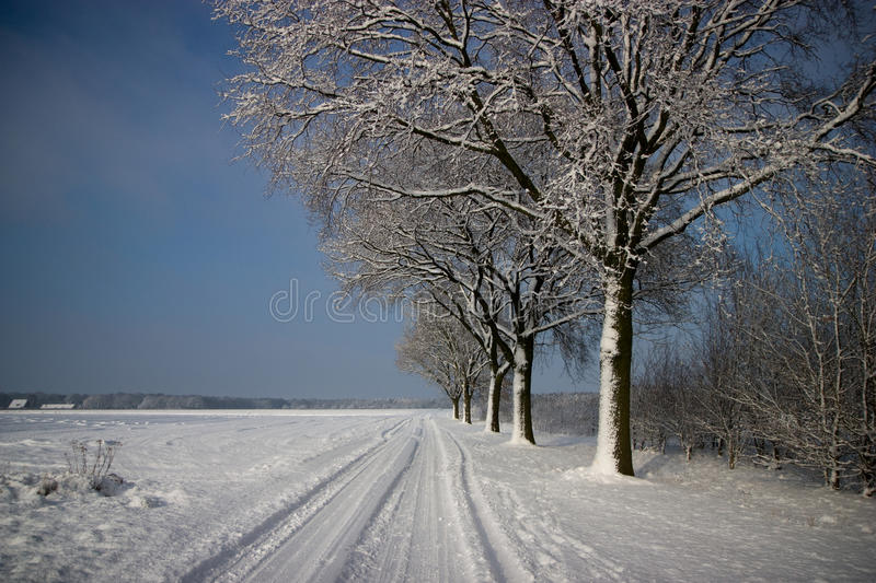 Download Winter Landscape stock image. Image of nature, white - 12661847
