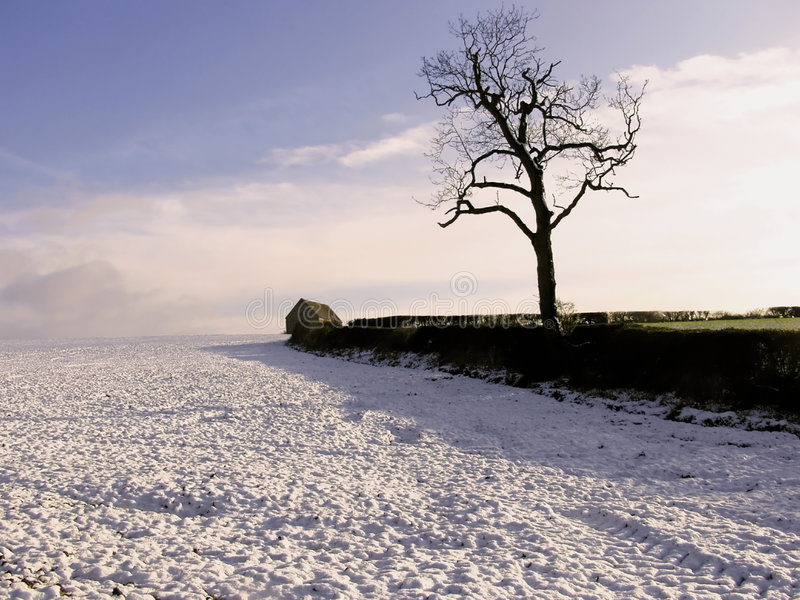 Download Winter landscape stock image. Image of chill, barn, field - 1378201