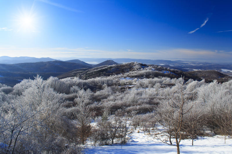 Winter landscape. Mountens with frozen trees and blue sky in Hungary royalty free stock photography