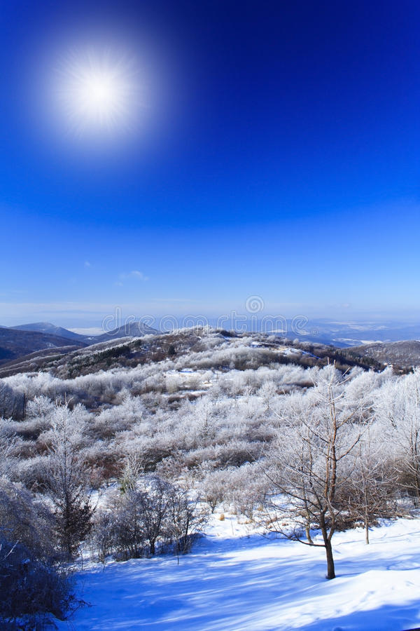 Free Winter Landscape Royalty Free Stock Photography - 16027527