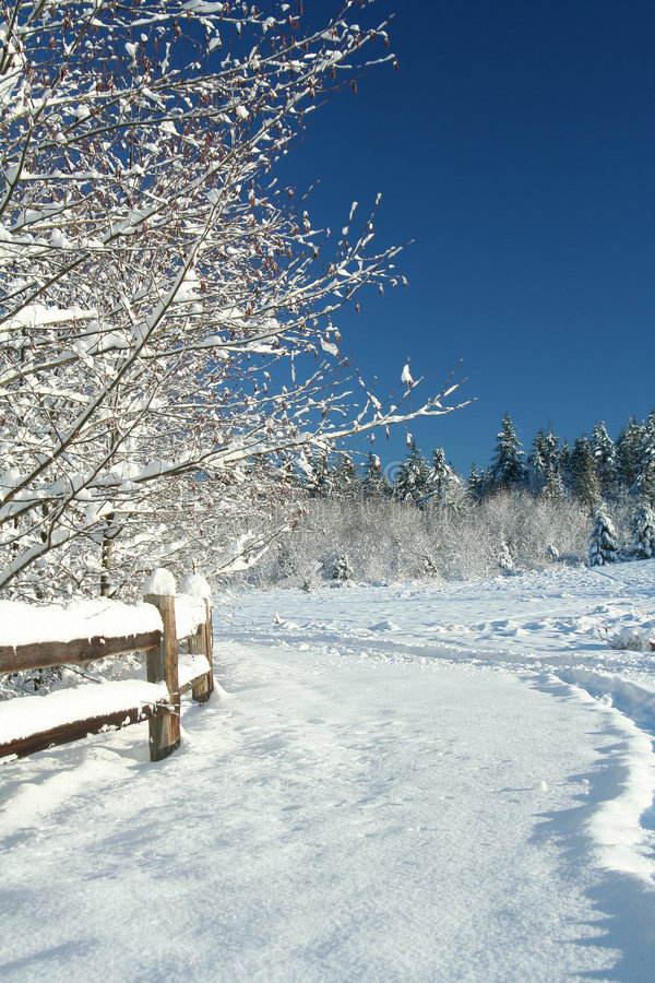 Free Winter Landscape Stock Photos - 1764353