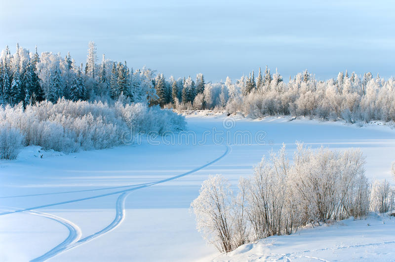 Winter landscape. royalty free stock photos