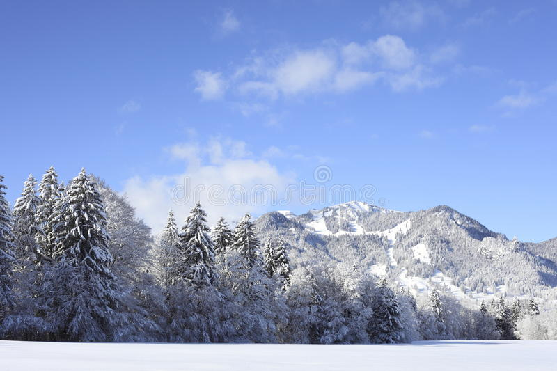 Download Winter landscape stock photo. Image of snowfall, fairytale - 23032728