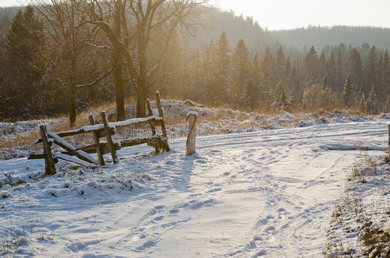 Download Winter Landscape stock image. Image of travel, tree, landscape - 26499779