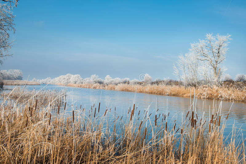 Download Winter landscape stock photo. Image of lake, serene, fresh - 28824892
