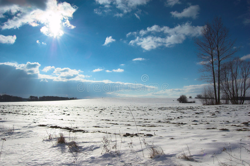 Winter landscape. Winter landcape with sun, trees, blue sky with some clouds stock photography