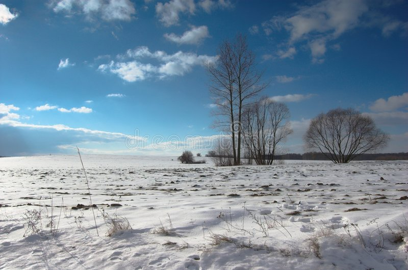 Winter landscape. Winter landcape with trees, blue sky with some clouds stock images