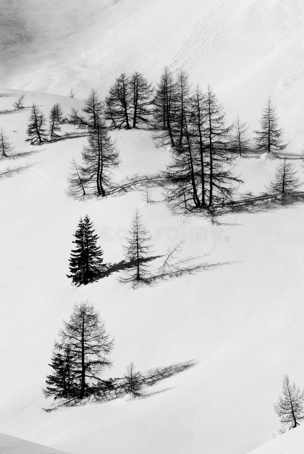 Free Winter Landscape Royalty Free Stock Photography - 8753787