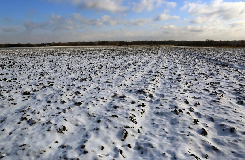 Agricultural field under snow stock images