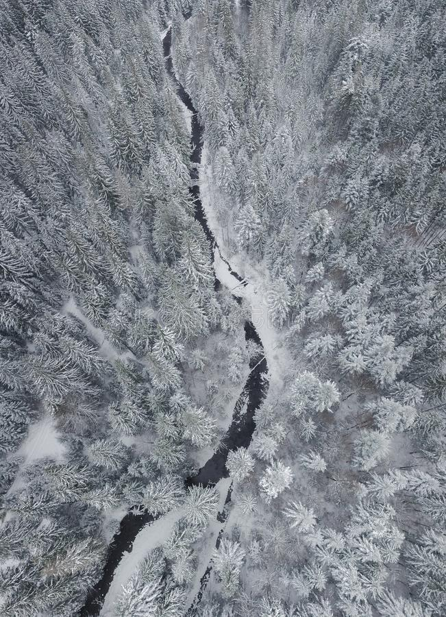 Forest and river in the winter mountain valley. Winter landscape from air. Forest and river in the winter mountain valley stock photo