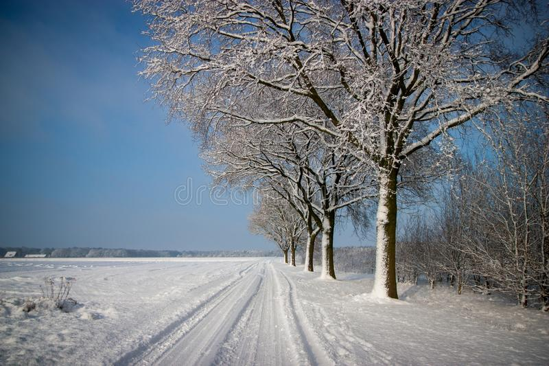 Winter landscape all covered in snow with bright blue sky. Trees, road and fields all covered in snow. Beautiful blue sky stock photo