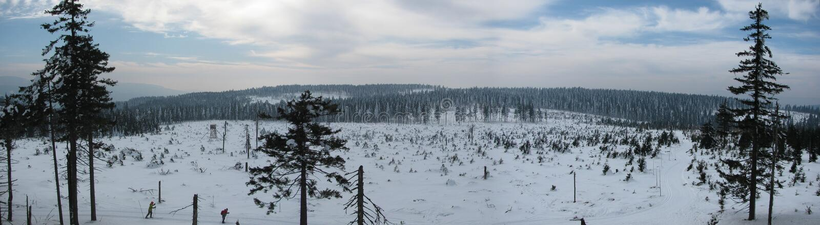 Winter landscape along the tracks for cross-country skiing stock photography