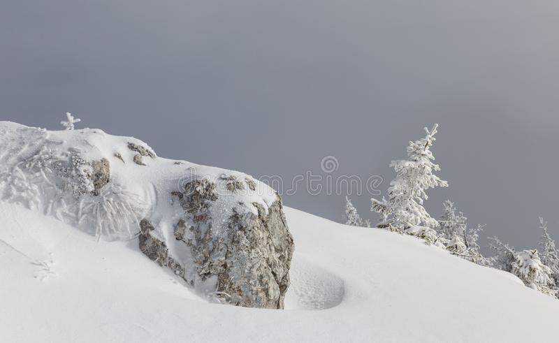 Winter landscape of alpine highlands in fog. View of winter fairy-tale frosen trees and rock in the Carpathians in misty. Day. Romania stock photo