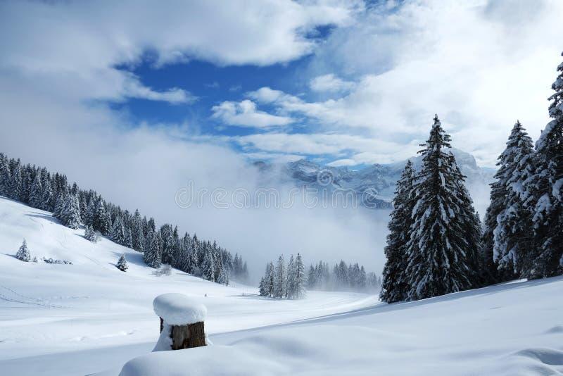 Winter landscape from Alps in Switzerland stock photos