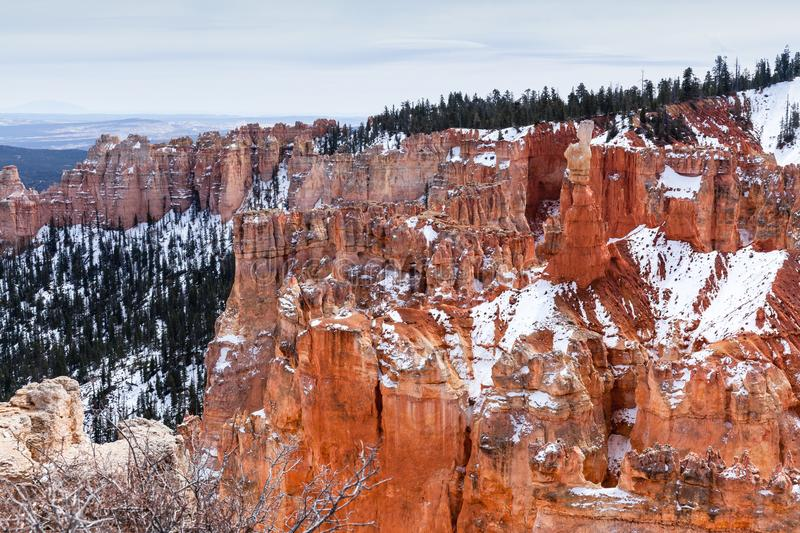 Winter Landscape In Bryce Canyon National Park, USA stock images