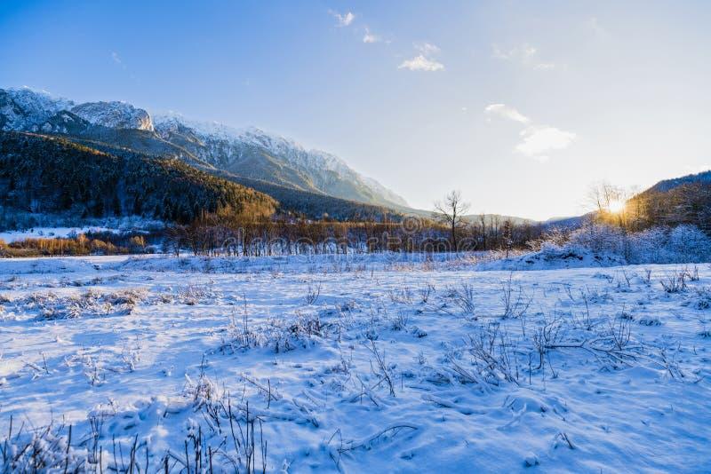 Winter landscape with Carpati Piatra Craiului mountain. Beautiful winter landscape with Carpati Piatra Craiului mountains in Romania royalty free stock images