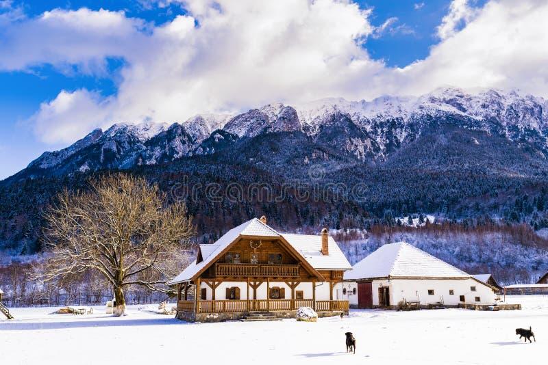 Winter landscape with Carpati Piatra Craiului mountain. Beautiful winter landscape with Carpati Piatra Craiului mountains in Romania royalty free stock photo