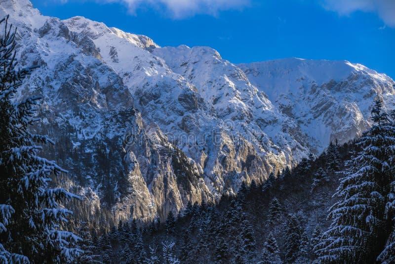 Winter landscape with Carpati Piatra Craiului mountain. Beautiful winter landscape with Carpati Piatra Craiului mountains in Romania stock images