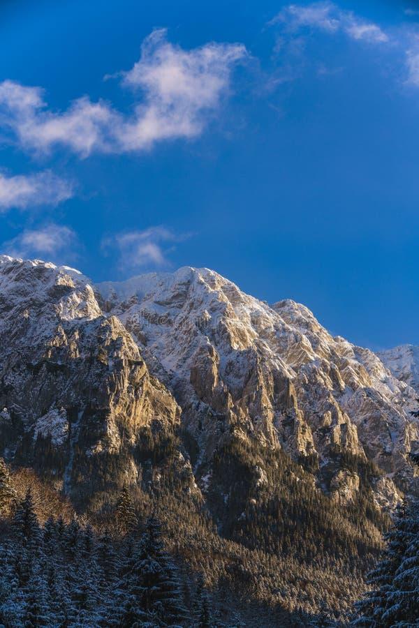 Winter landscape with Carpati Piatra Craiului mountain. Beautiful winter landscape with Carpati Piatra Craiului mountains in Romania stock photos