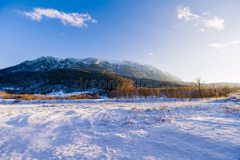 Winter landscape with Carpati Piatra Craiului mountain. Beautiful winter landscape with Carpati Piatra Craiului mountains in Romania stock image