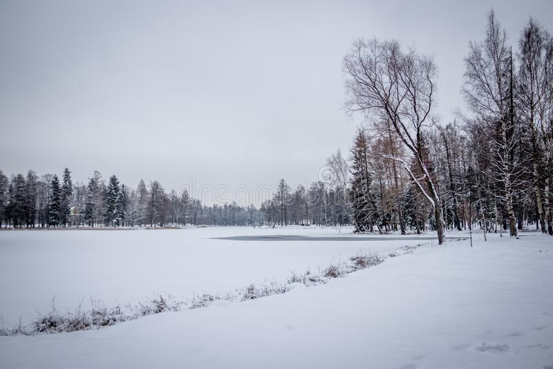 Winter landscape in cloudy weather. Winter Park. Expanses of Russia stock images