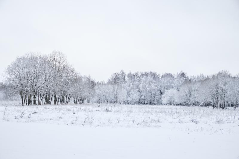 Winter landscape in cloudy weather. Winter Park. Expanses of Russia royalty free stock image